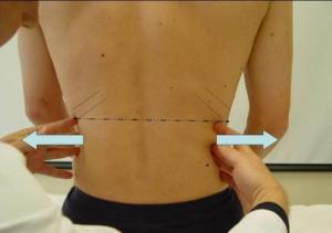 Diaphragmatic Stability Test
