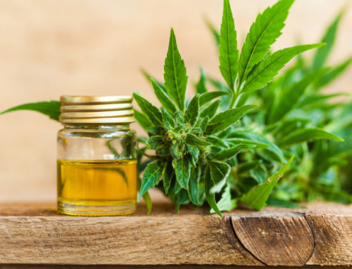 CBD Oils – Your Questions Answered